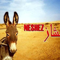 neshez tunisino mp3