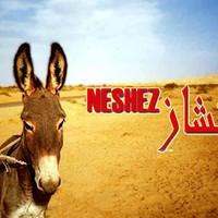 neshez tunisino mp3