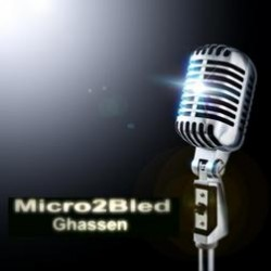 Ghassen Micro2bled