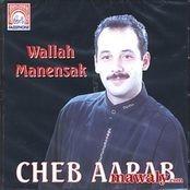 GRATUITEMENT TÉLÉCHARGER AARAB MP3 MUSIC CHEB